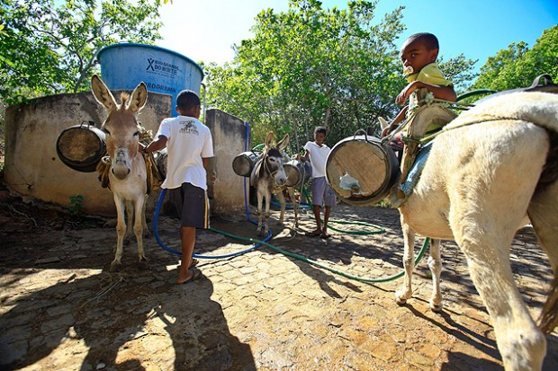 La sequía también castiga con fuerza al Norte de Brasil. Fotografía: Jarbas Oliveira/Folhapress.