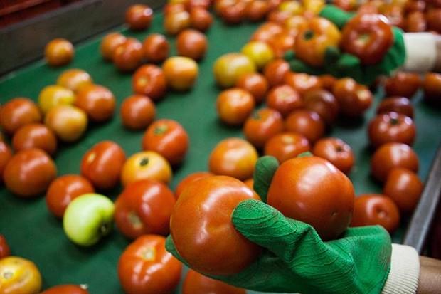En el Ceagsp se venden al por mayor frutas y verduras. Fotografía: